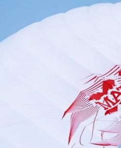 HQ foil kites